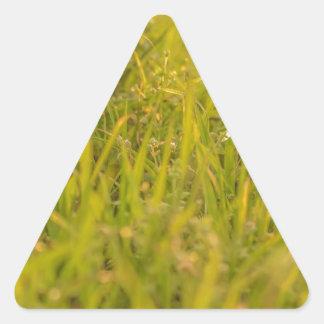 Gras-Detail-Foto Dreieckiger Aufkleber