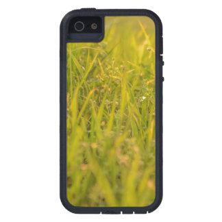 Gras-Detail-Foto iPhone 5 Etui