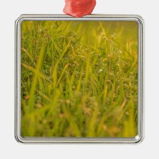 Gras-Detail-Foto Quadratisches Silberfarbenes Ornament