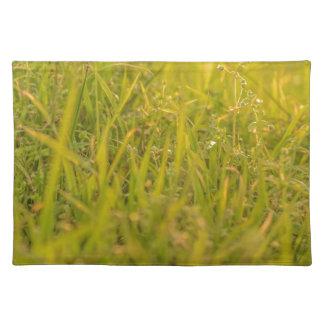 Gras-Detail-Foto Tischset