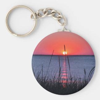 Gräser im Abendlicht - Insel Rügen Schlüsselanhänger