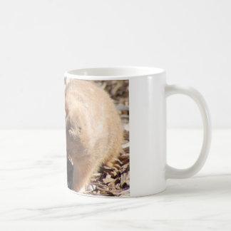 Grasland-HundeLiebe Kaffeetasse