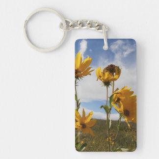 Grasland-Sonnenuntergang Schlüsselanhänger