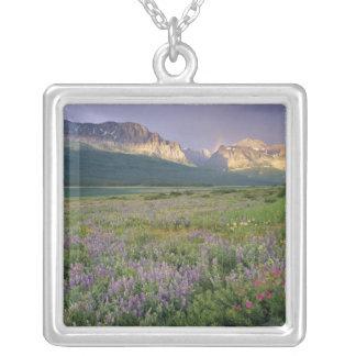 Grasland-Wildblumen entlang See Sherbourne in Versilberte Kette