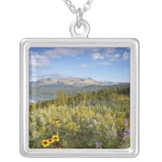 Grasland-Wildblumen und senken den zwei Medicine Versilberte Kette