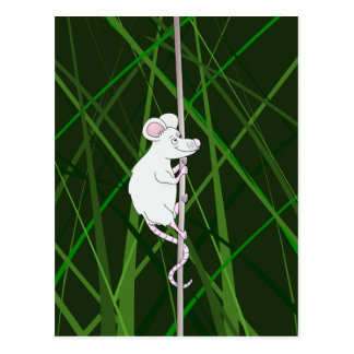 Graue Feldmaus im hohen Gras Postkarte