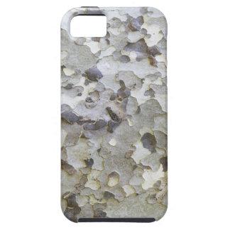 Graue graue Platane-Barke iPhone 5 Etui