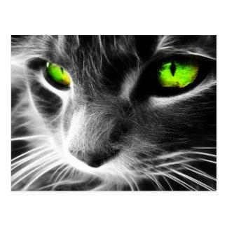 Graue Katzen-grüne Augen Postkarte