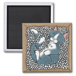 Graue Smokings-Katze, die im Kasten Verpackungs-Er Quadratischer Magnet