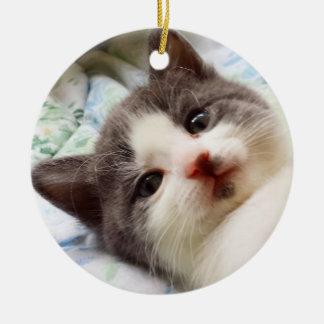 Graue u. weiße Kätzchen-Verzierung Rundes Keramik Ornament