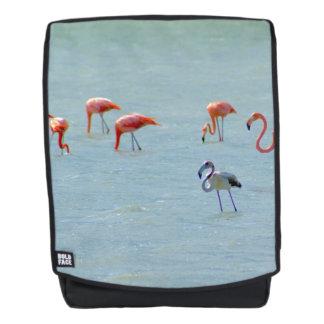 Graue und rosa Flamingomenge im See Rucksack