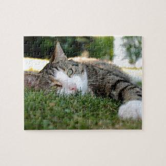 Graue und weiße Tiger-Katze träumt auf Gras Puzzle