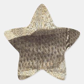 Grauer Karpfen im Wasser durch Utagawa Toyokuni II Stern-Aufkleber