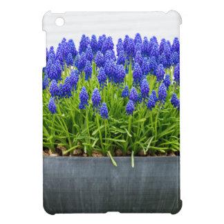Grauer MetallBlumenkasten mit blauen iPad Mini Cover