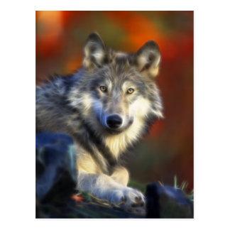 Grauer Wolf, Arten-Digitalfotografie Postkarte