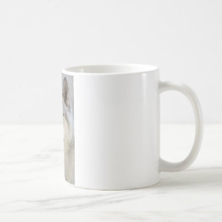 Grauer Wolf Kaffeetasse