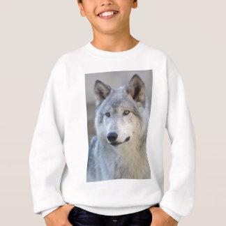 Grauer Wolf-Nahaufnahme Sweatshirt