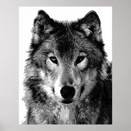 Grauer wolf plakat druck