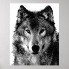 Grauer Wolf-Plakat-Druck Poster