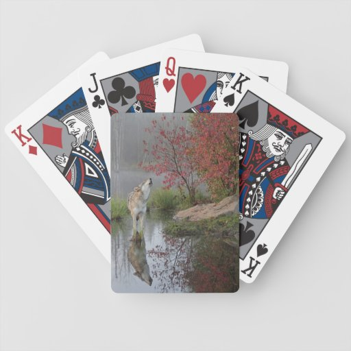 Grauer Wolf-Spielkarten