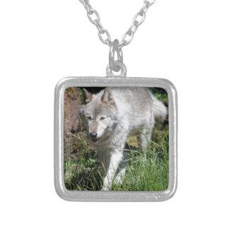 Grauer Wolf Versilberte Kette