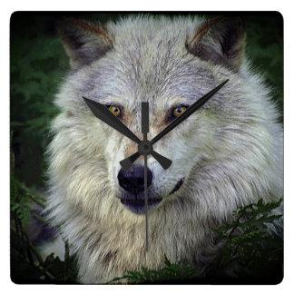 Grauer Wolf-wild lebende Tiere Tier-Liebhaber Uhr