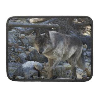 Grauer Wolf-wildes Tier-MacBook-Kasten Sleeve Für MacBook Pro