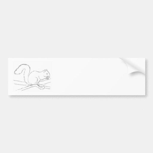 Graues Eichhörnchen, eine Nuss essend. Skizze Auto Sticker