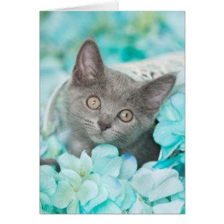 Graues Sadie blaues leeres Mit Blumennotecard Karte