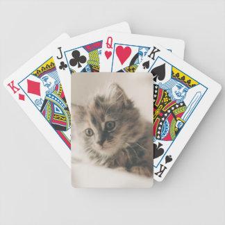 Graues Tabby-Kätzchen Bicycle Spielkarten