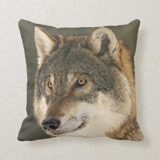 Grauwolf Kissen