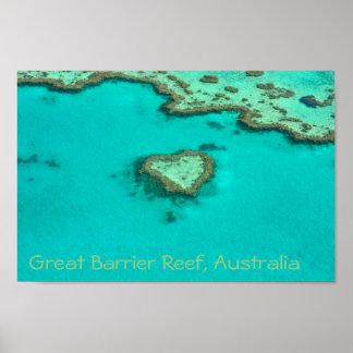 Great Barrier Reef, Australien-Herzkoralle Poster