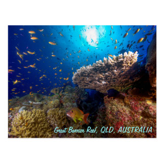 Great Barrier Reef Postkarte