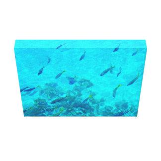Great Barrier Reef tropische Fische Leinwanddruck