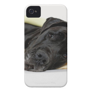 Great Dane - black / Deutsche Dogge - schwarz iPhone 4 Cover