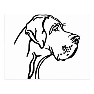 Great Dane Head drawing Postkarte