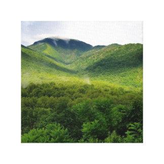 Great Smoky Mountains Leinwanddruck