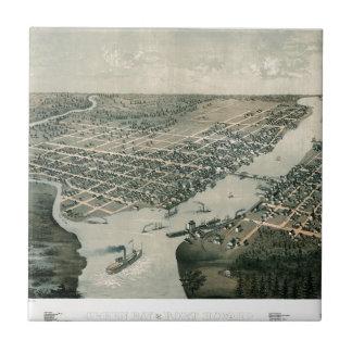 Green Bay Wisconsin 1867 Fliese