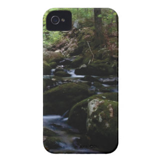 Green River Bett iPhone 4 Cover
