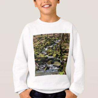 Greenwaynebenfluß Sweatshirt