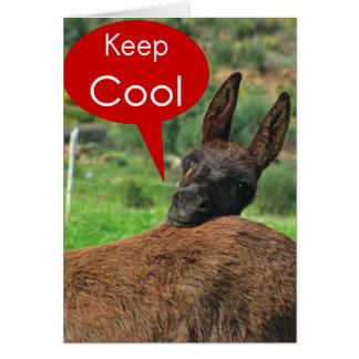 GreetingCard: Glücklicher Esel - behalten Sie cool Karte