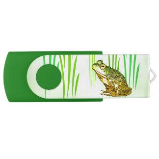 Greller Antrieb Prinzessin-Charming Frog Swivel Swivel USB Stick 2.0