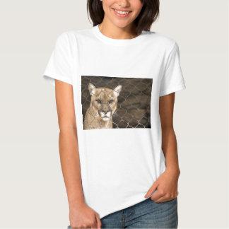 Greller Glanz Shirts