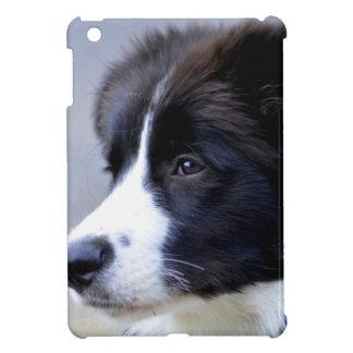 Grenze iPad Mini Hülle