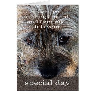 GrenzTerrier-Hundegeburtstagskarte Karte