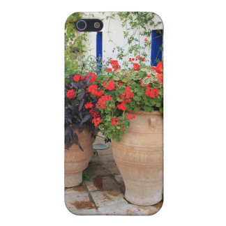 Griechische Urnen iPhone 5 Cover