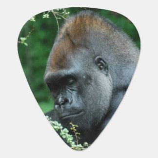 Grimmiger Gorilla Plektrum
