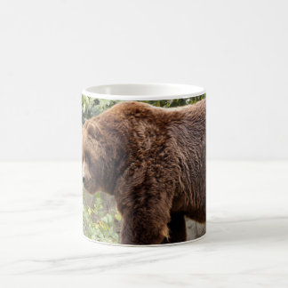 grizzly-bear-001 kaffeetasse