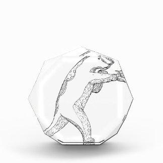 Grizzlybär-boxende Gekritzel-Kunst Acryl Auszeichnung