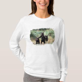 Grizzlybär, Braunbär, Junge in den hohen Gräsern, T-Shirt